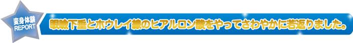No7_金タイトル